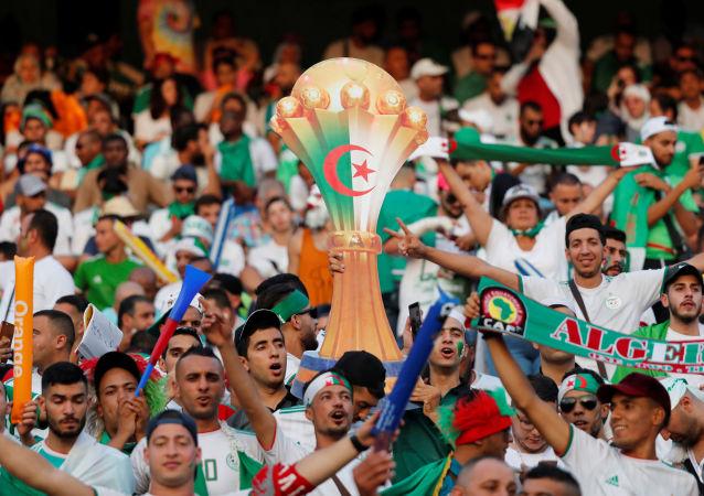 جماهير منتخب الجزائر في نهائي أمم أفريقيا