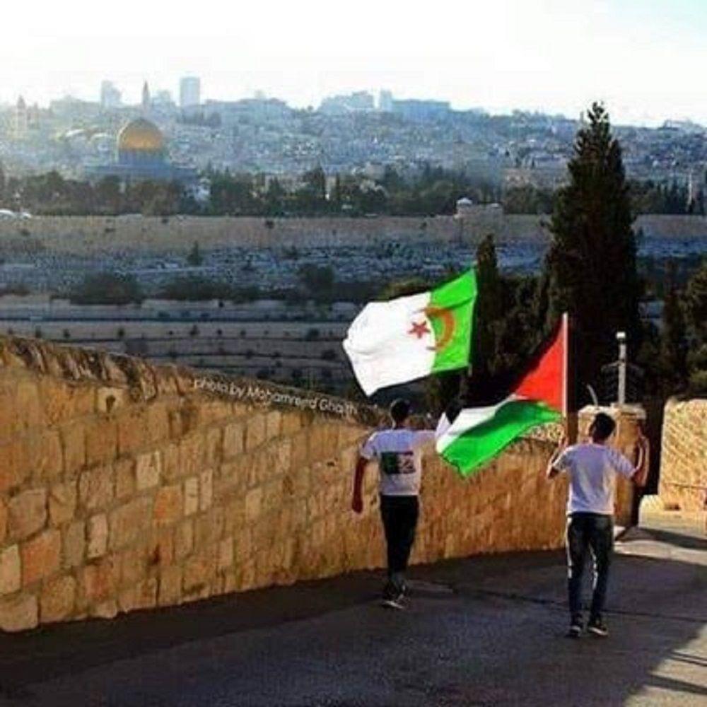 مبارك للجزائر توأم فلسطين