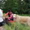 كلبة تستنجد بالبشر لإنقاذ جرائها... والبشر يلبون النداء