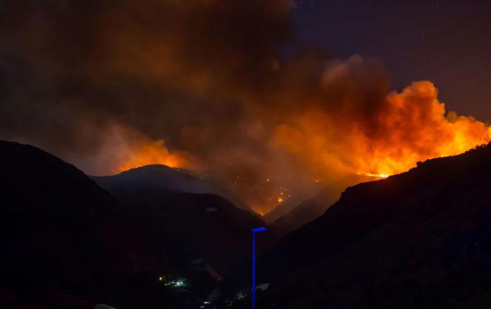 بالصور... حريق غابات يدفع السلطات الإسبانية لإخلاء منطقة بجزر الكناري