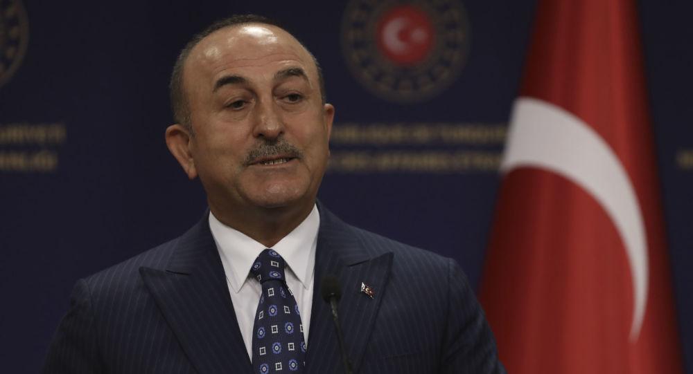 وزير الخارجية التركي ينفي وجود أي دوافع سياسية لتعليق روسيا رحلاتها إلى تركيا