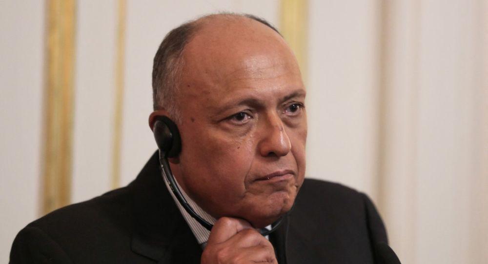 وزير الخارجية المصري يستقبل نظيره الجزائري ويبحث معه ملف سد النهضة