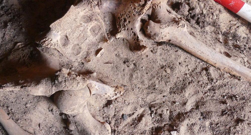 ألكشف عن أقدم إصابة بسرطان الثدي في مصر القديمة