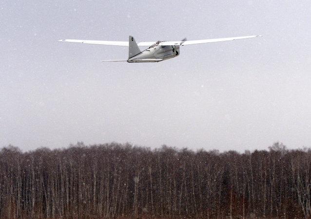 طائرة أورلان 10 الموجهة عن بعد