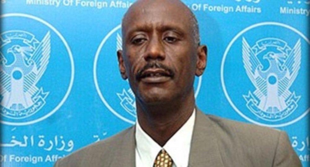 الناطق الرسمي لوزارة الخارجية السفير علي الصادق