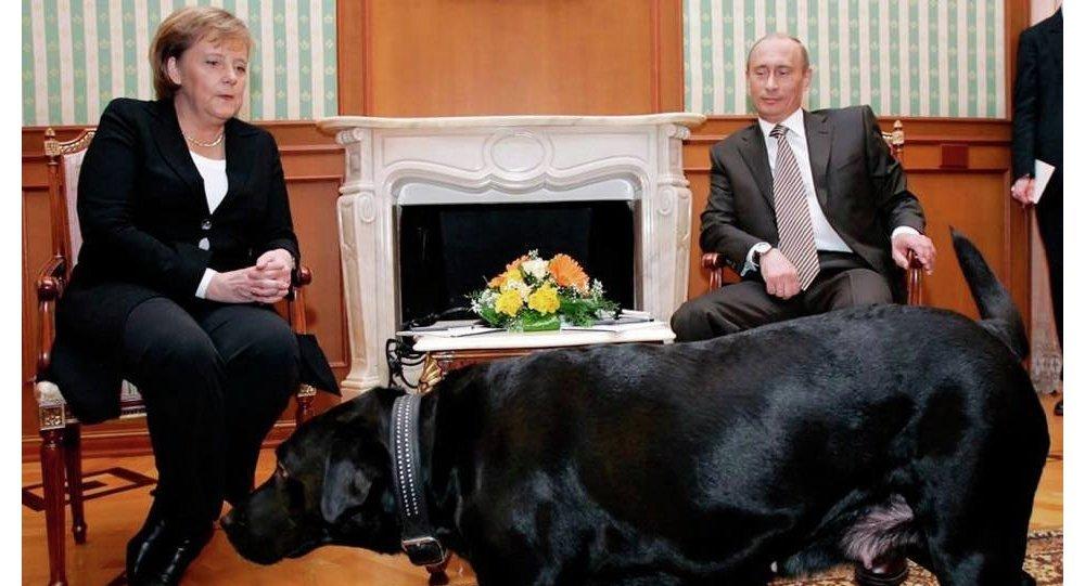 بوتين وكلبه كوني
