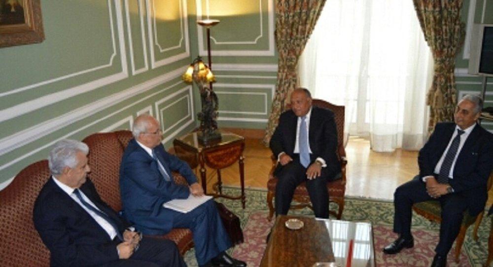 وزير خارجية مصر وكبير المفاوضين الفلسطينيين