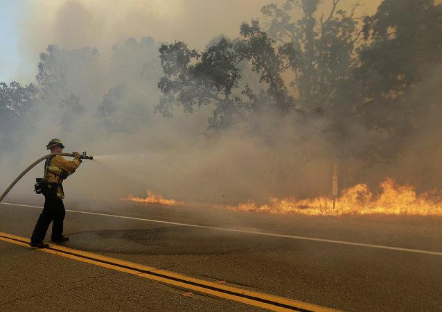 إخماد حرائق الغابات (أرشيفية)