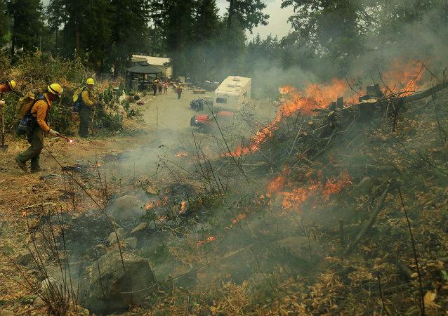 إخماد حرائق الغابات