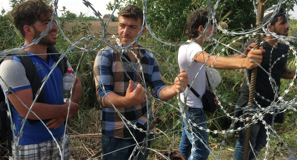 على الحدود بين المجر وصربيا