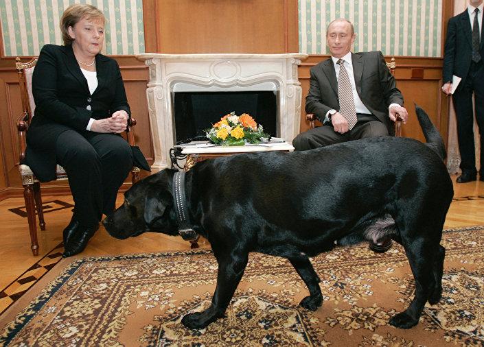انجيلا ميركل وفلاديمير بوتين