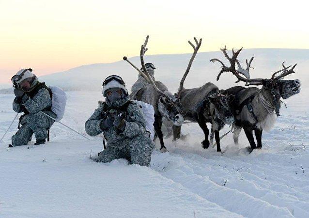 تدريبات الجيش الروسى فى الشمال