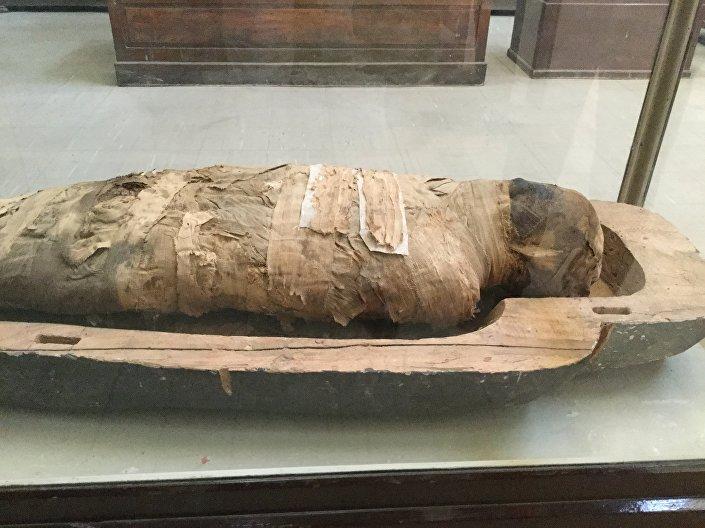 مومياء بالمتحف المصري بالقاهرة