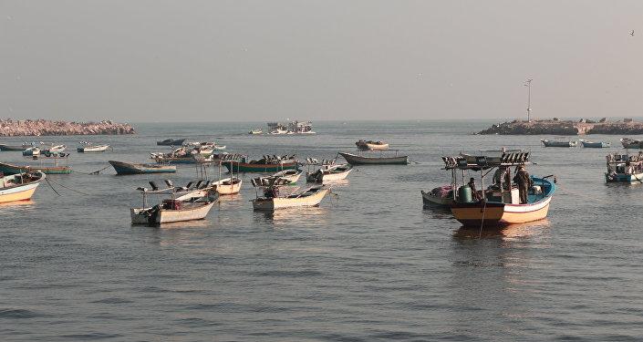 ميناء غزة والصيادون الفلسطينيون
