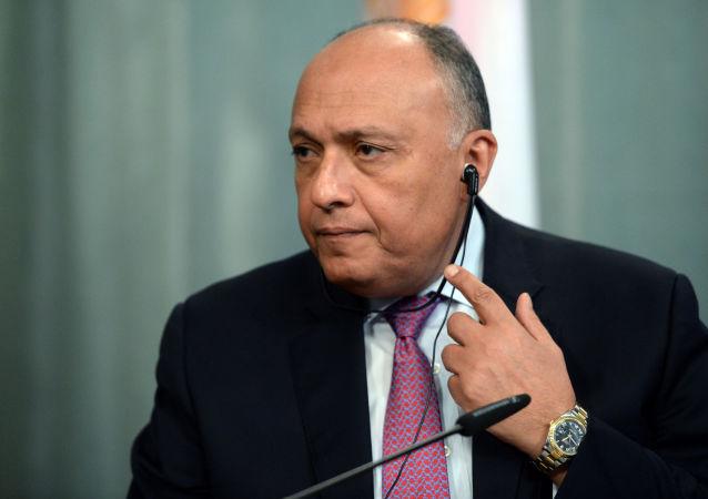 سامح شكري وزير الخارجية المصري