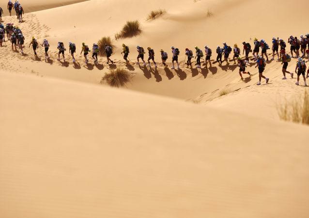 المشاركون في الماراثون في الجزء الغربي من الصحراء (مسافة الـ 257 كم)، 10 أبريل/ نيسان 2016