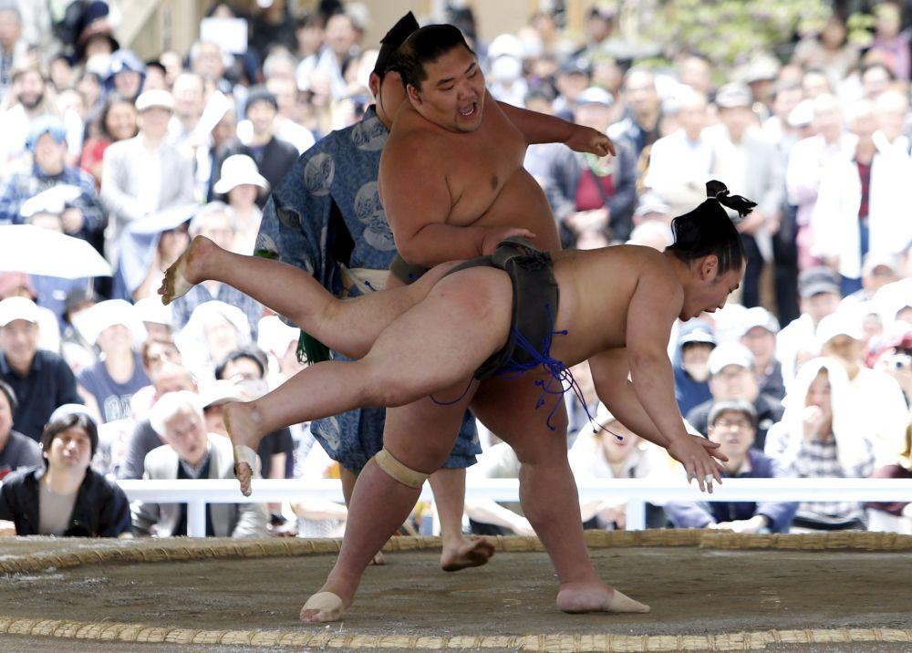 مهرجان خونوزيومو لمصارعة السومو في اليابان، 11 أبريل/ نيسان 2016.