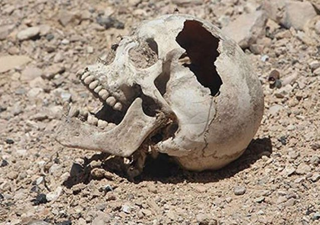 كارثة فى سوريا... ماذا اكتشف مراسل قناة روسية فى مدينة تدمر؟