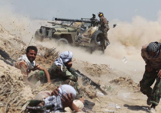 القوات العراقية خلال معاركها مع التنظيم الإرهابي داعش في الفلوجة، 25 مايو/ آيار 2016.
