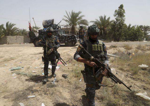 القوات العراقية فى الفلوجة
