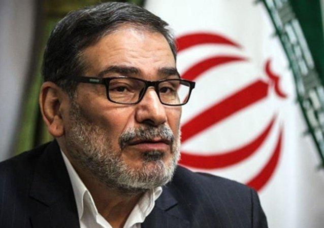 رئيس مجلس الأمن القومي الإيراني علي شمخاني