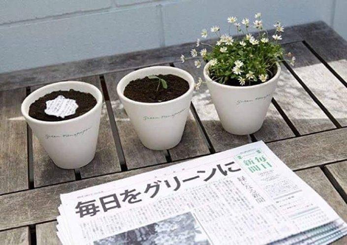 صحيفة يابانية تتحول إلى نباتات