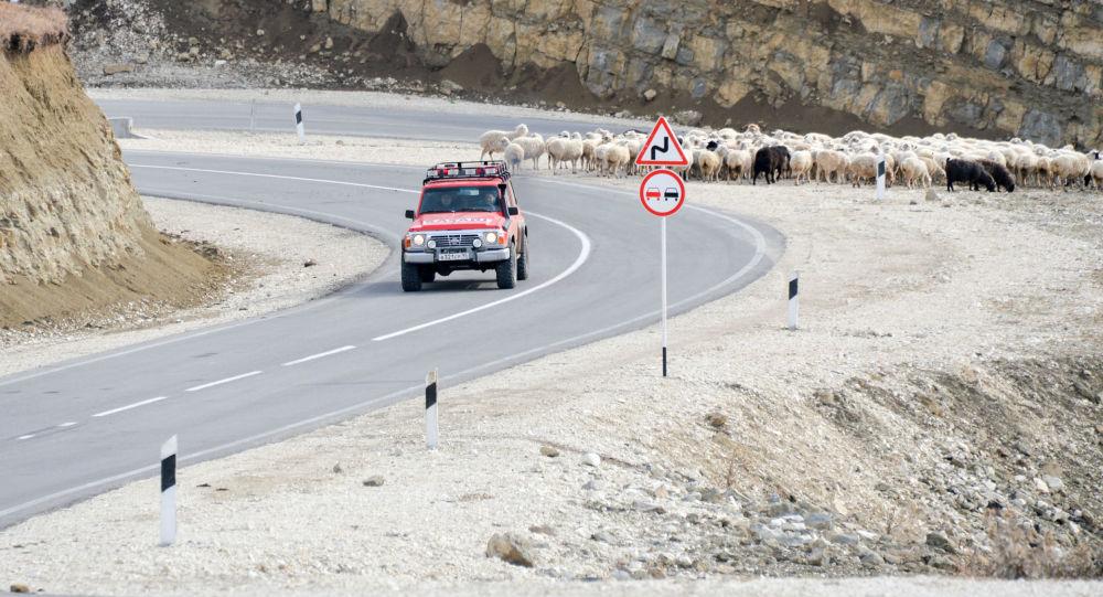 طريق جبلي فيدينو-بوتليخ