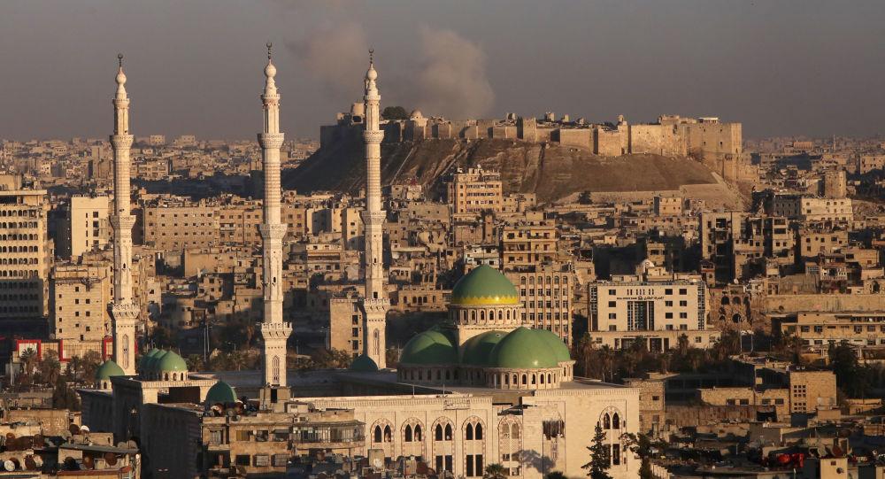 مشهد عام لمدينة حلب الأثرية وقلعة حلب التاريخية، 3 ديسمبر/ كانون الأول 2016