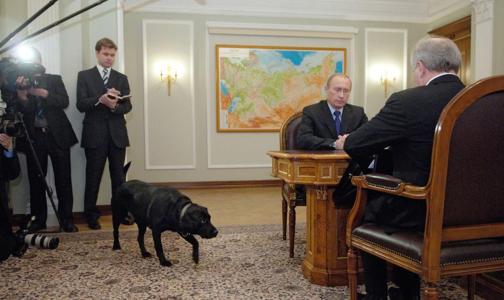 الرئيس فلاديمير بوتين وكلبه كوني خلال الاجتماع مع حاكم جمهورية كومي الروسية في نوفو-أوغاريفو. .