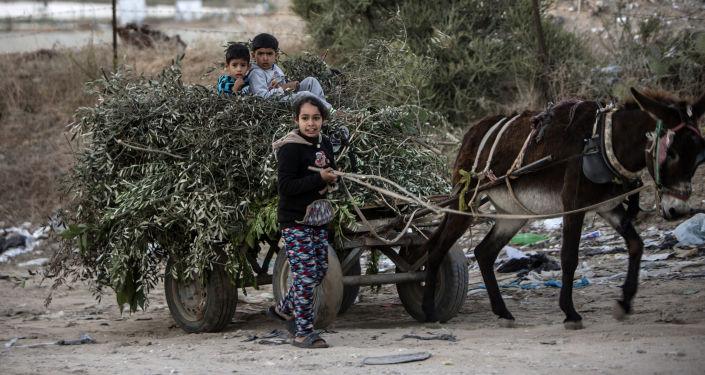 أطفال البجو الصغار بالقرب من معبر إيريز في بيت حانون، قطاع غزة، فلسطين، 7 ديسمبر/ كانون الأول 2016