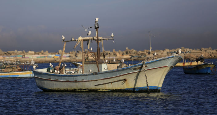 ميناء غزة، مدينة غزة، قطاع غزة، فلسطين، 12 ديسمبر/ كانون الأول 2016