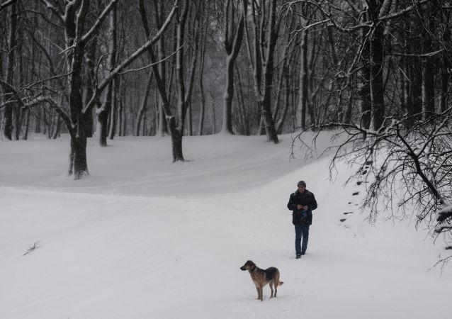 فصل الشتاء في فيليكي نوفغورود