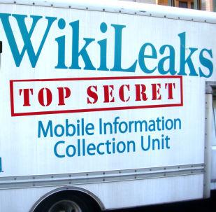 Логотип Wikileaks на фургоне автомобиля