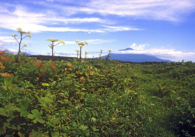 بركان تاتيا أجمل المناطق في روسيا