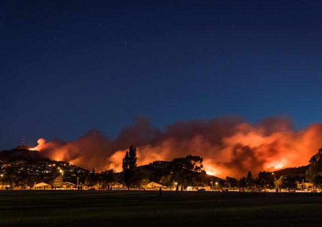 حرائق كبيرة تشتعل في جنوب نيوزيلاندا، 15 فبراير/ شباط 2017