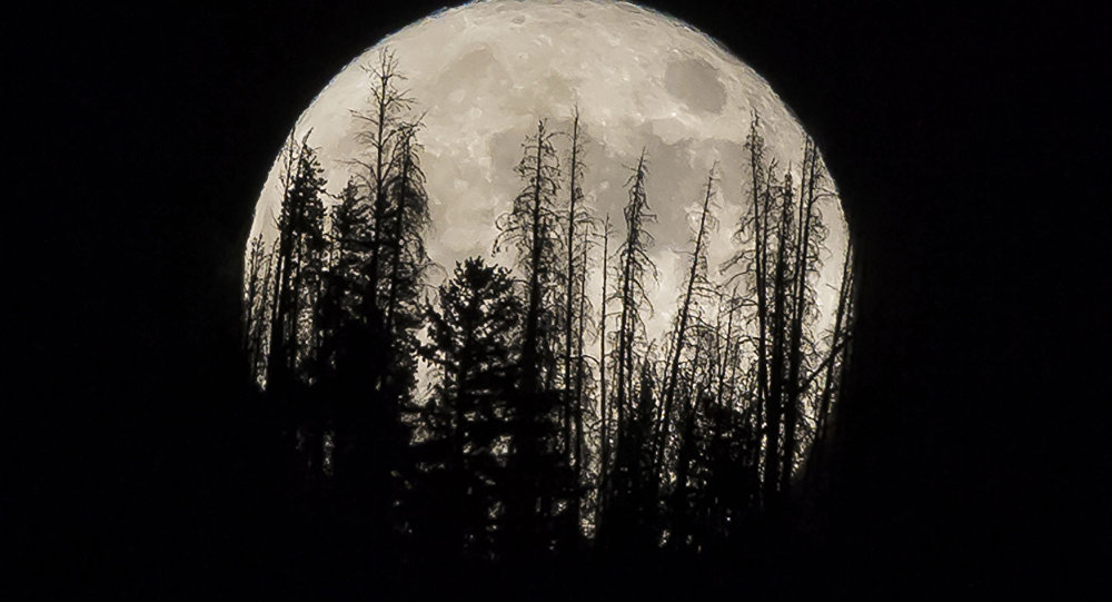 القمر العملاق في الولايات المتحدة،  14 نوفمبر/ تشرين الثاني 2016
