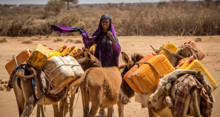 امرأة تقود الحمير التي تحمل وعاء لتعبئة المياه، صورة التقطت من قبل جمعية الصليب الأحمر، الصومال 15 مارس/ آذار 2017