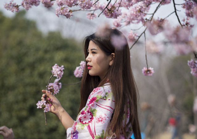 فتاة في زي تقليدي تحمل زهرة ساكورا (أزهار الكرز) في حديقة بشنغهاي، الصين 4 مارس/ آذار 2017