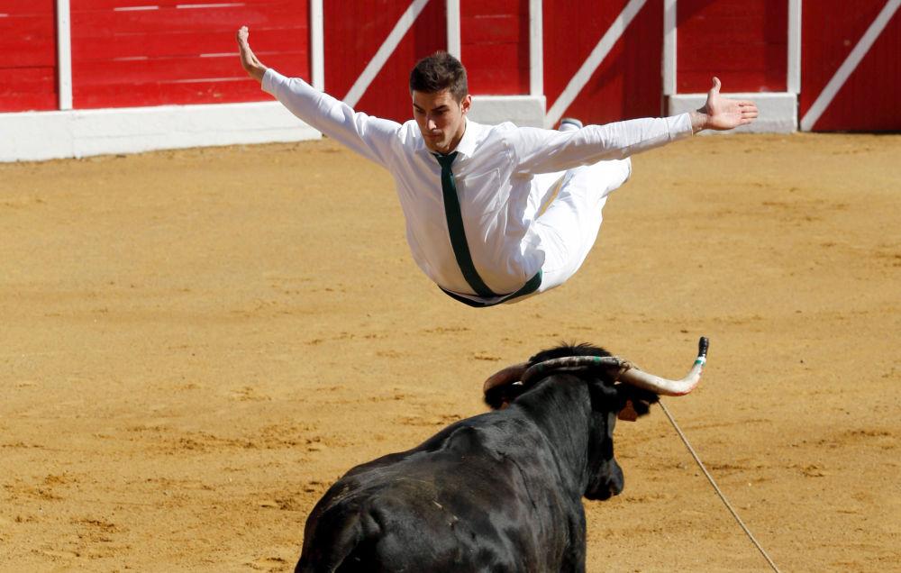 مشارك في مسابقة جري الأبقار في إنيان، فرنسا 17 أبريل/ نيسان 2017