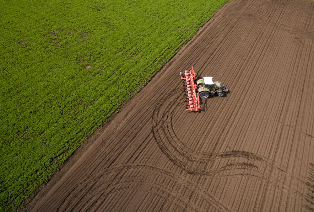 موسم نشر البذور والري في حقول أغرو أوبيدينيني - كوبان في كراسنودار، روسيا