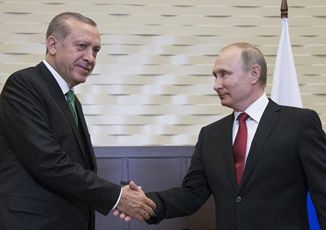 لقاء الرئيس الروسي فلاديمير بوتين بالرئيس التركي رجب طيب أردوغان في مدينة سوتشي، 3 مايو/ آيار 2017