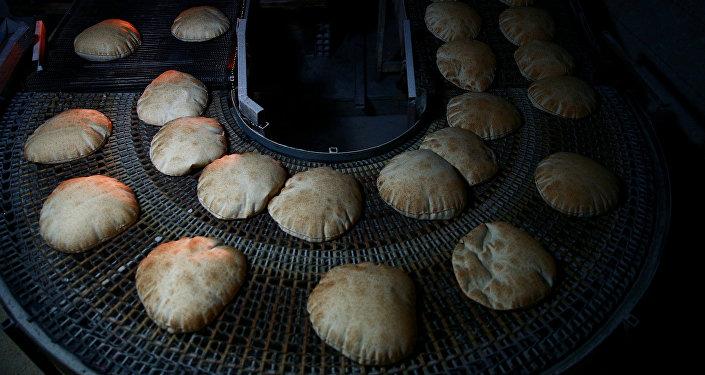 بعد حالات التسمم… فيديو لجرذ فوق الخبز يثير الجدل حول سلامة الغذاء في الأردن