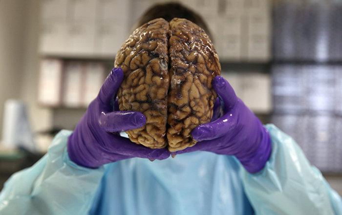 حشو الزيتون بدماغ مفتوح… أغرب عمليات الطب الحديث… صور