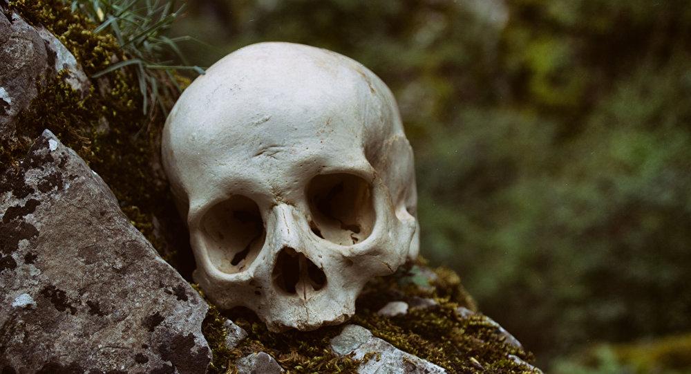 جمجمة إنسان