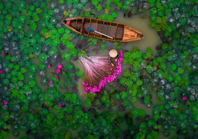 صورة بعنوان Waterlily - حصلت على جائزة (المرتبة الثانية) في فئة الناس في مسابقة التصوير Dronestagram