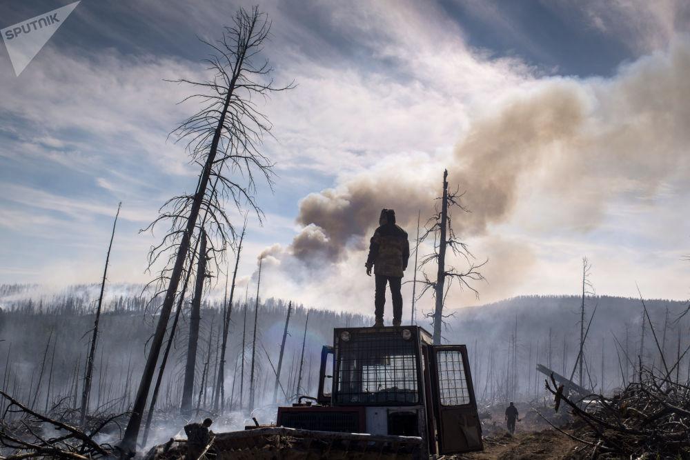 أحد عناصر حرتس حماية الغابات في جمهورية بورياتيا خلال القضاء على حرائق حي كابانسك في بورياتيا، روسيا الاتحادية