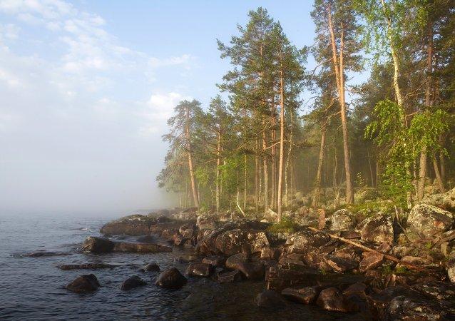 بحيرة أونيغا