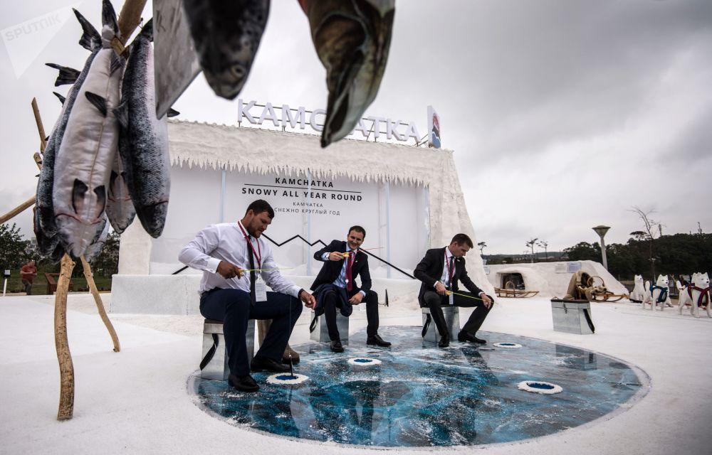 معرض كامتشاتكا خلال معرض شارع الشرق الأقصى على ساحل آياكس ضمن منتدي الشرق الأقصى الاقتصادي، في فلاديفوستوك، روسيا