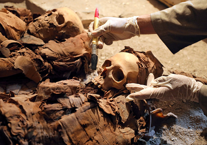 مومياء صانع الذهب الفرعوني © REUTERS/ MOHAMED ABD EL GHANY