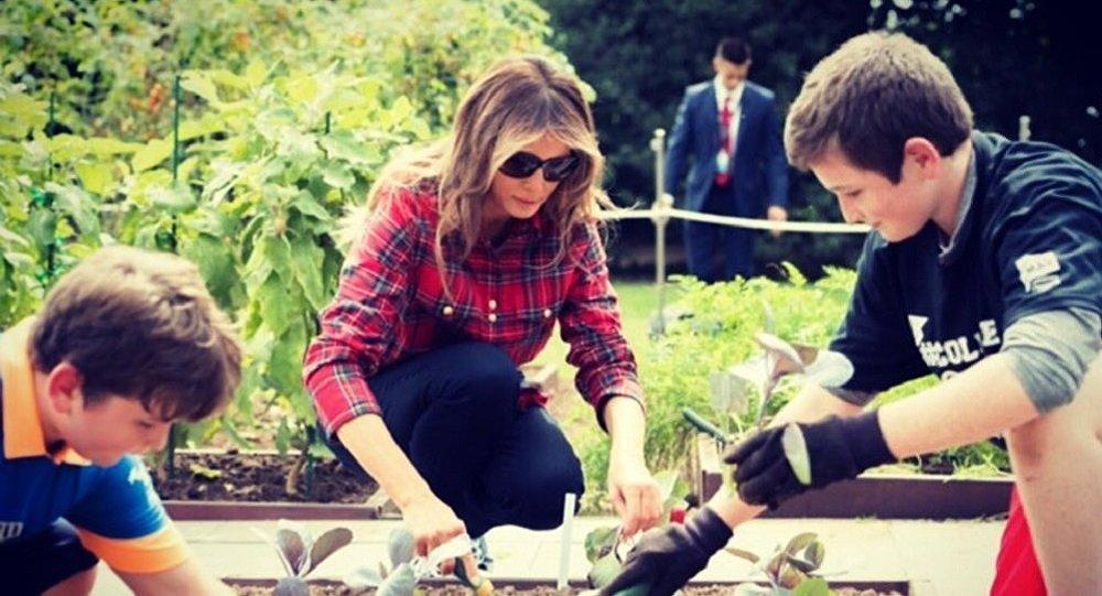 ميلانيا ترامب تشارك في زراعة حديقة البيت الأبيض